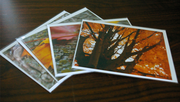 Set of Four Photo Cards - Fall by Emilie